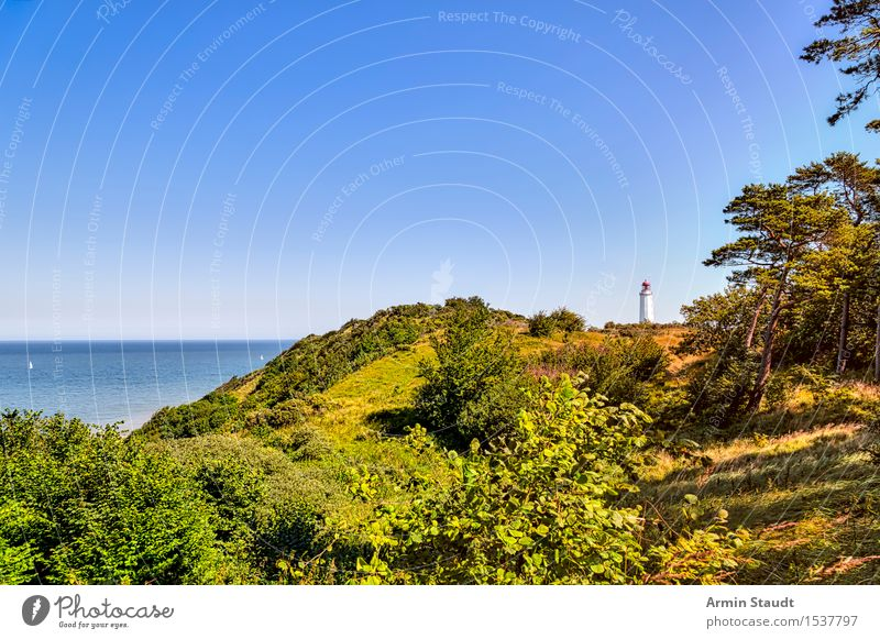 Hiddensee with lighthouse Harmonious Contentment Relaxation Vacation & Travel Tourism Trip Far-off places Summer vacation Island Nature Landscape Cloudless sky