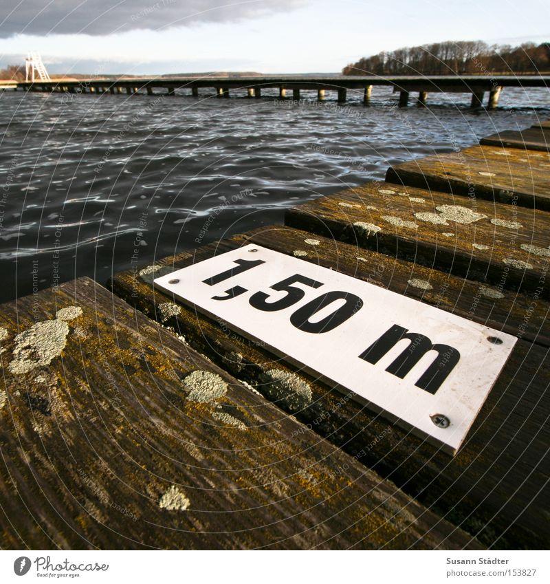 Water Cold Wood Lake Waves Dirty Wet Fish Dive Footbridge Deep Damp Feces Meter Bird droppings