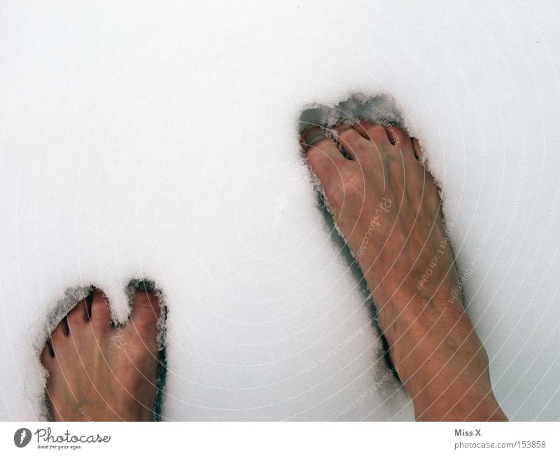 Winter Cold Snow Feet Ice Frost Frozen Freeze Toes Barefoot Harden