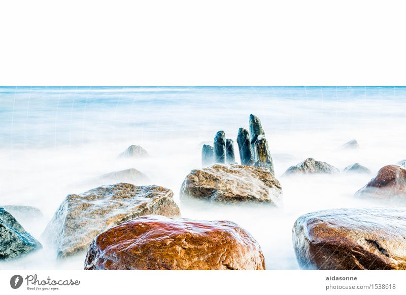 Nature Water Landscape Calm Winter Life Beautiful weather Baltic Sea Serene Wanderlust Caution Attentive