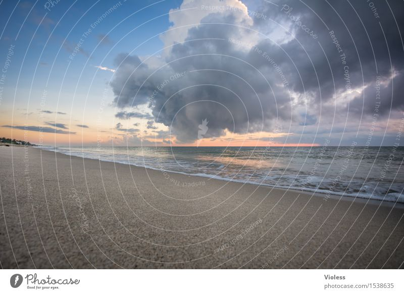 Vacation & Travel Ocean Clouds Beach Travel photography Waves