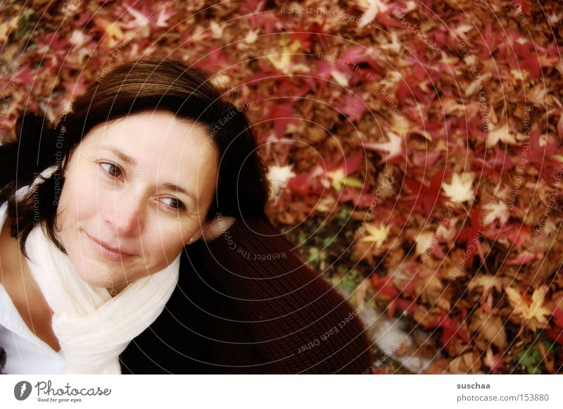 outside with s.... Woman Face Beautiful Laughter Happy Facial expression Scarf Leaf Autumn Cold Seasons Portrait photograph Exterior shot