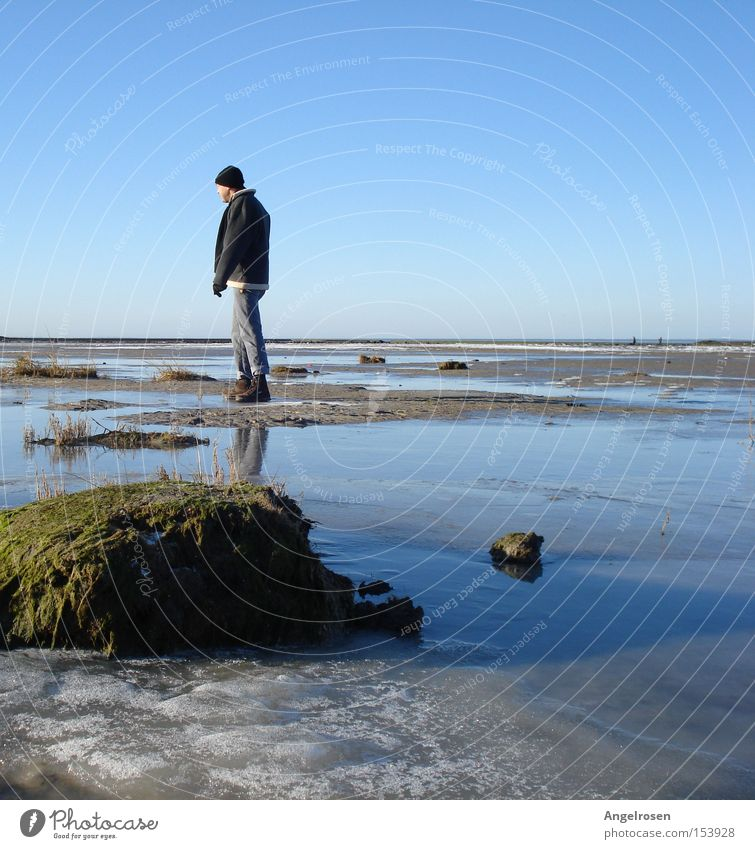 torpor Beach Winter Man Adults Water Ice Frost Coast North Sea Cold Mud flats Low tide Walk along the tideland Blue sky Low water ice coast fishing roses