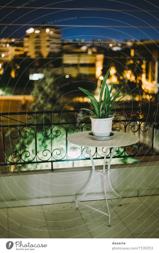 nights at Athen Nature Plant Summer Joy Warmth Life Interior design Style Lifestyle Freedom Moody Design Flat (apartment) Living or residing Leisure and hobbies