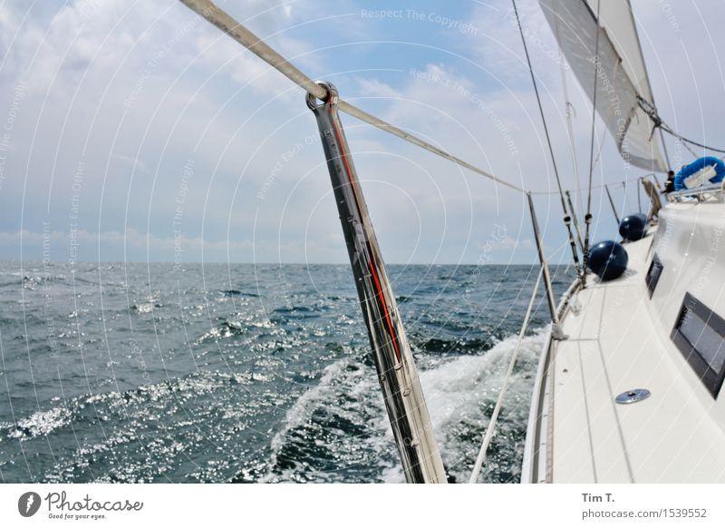 sail Happy Leisure and hobbies Sailing Spring North Sea Baltic Sea Ocean Navigation Yacht Sailboat Sailing ship Freedom Colour photo Exterior shot Deserted