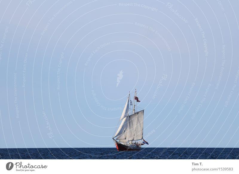 Nature Ocean Baltic Sea Serene Navigation Sailing Sailboat Sailing ship Boating trip