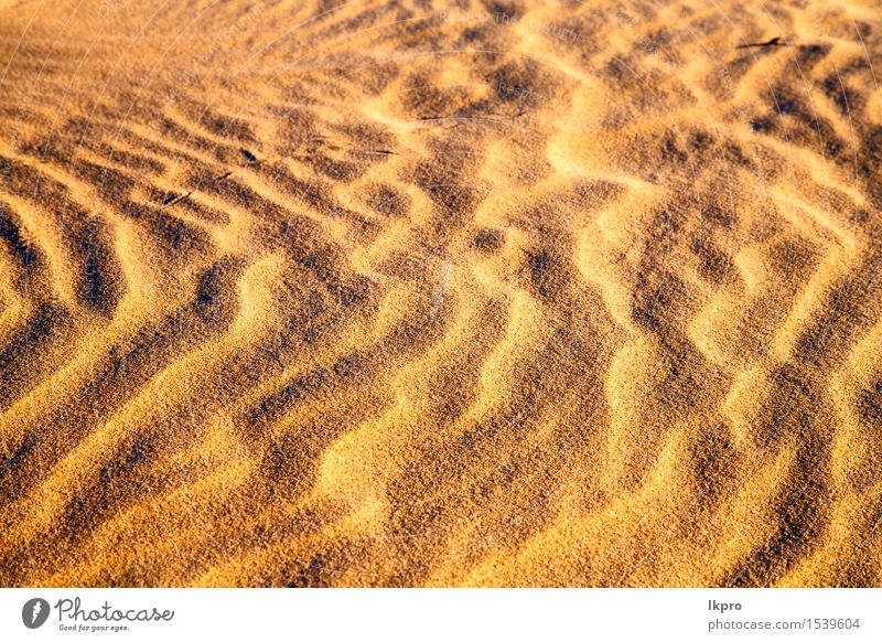 the brown sand dune in the sahara morocco desert Beautiful Vacation & Travel Wallpaper Nature Landscape Sand Beautiful weather Virgin forest Hill Hot Brown