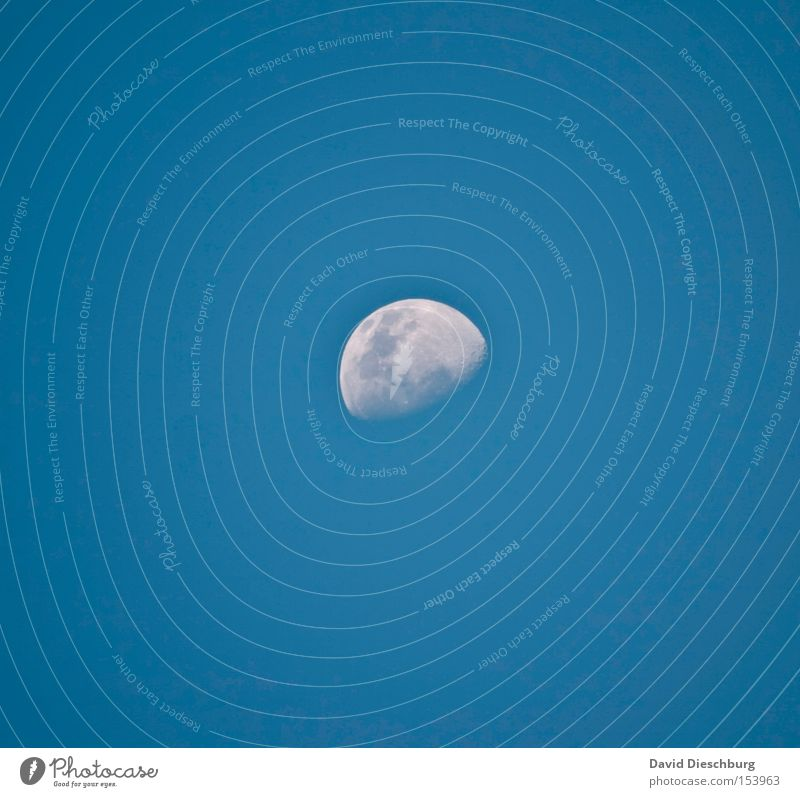 100% moon landing Moon Evening Sky Blue White Half moon Round Planet Universe Moon landing Contrast Zoom effect Decreasing Winter