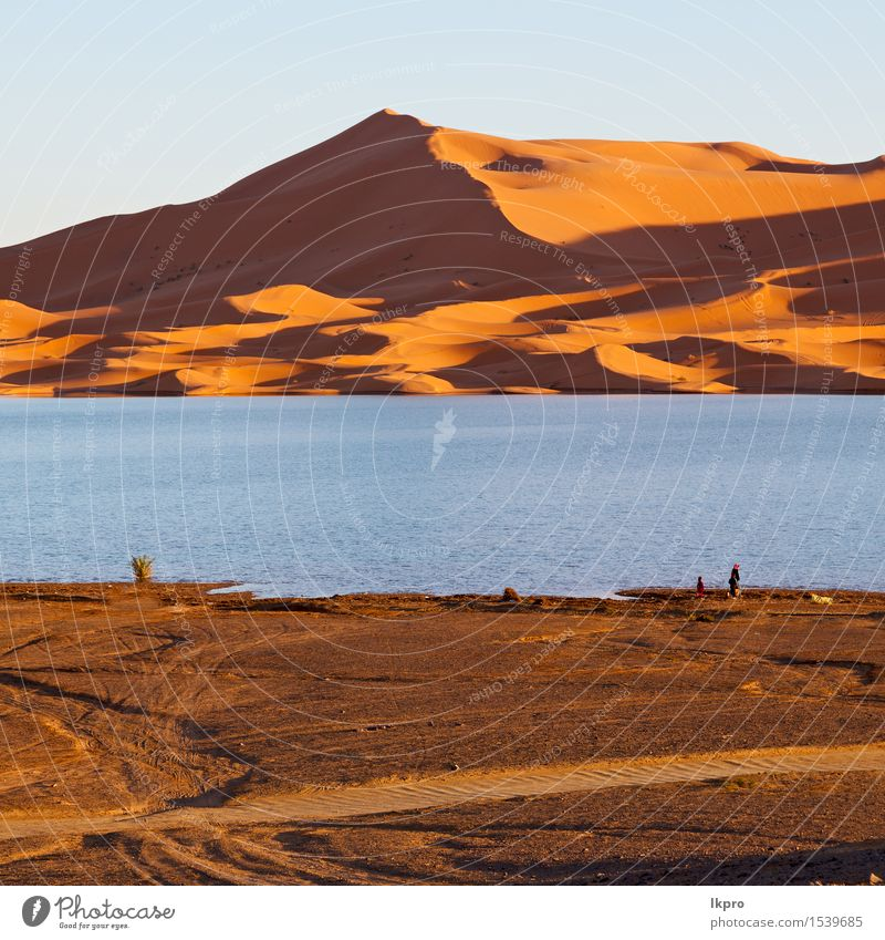 morocco sand and lake Nature Vacation & Travel Sun Landscape Red Loneliness Yellow Warmth Lake Sand Adventure Hot Dune Africa Drought Extreme