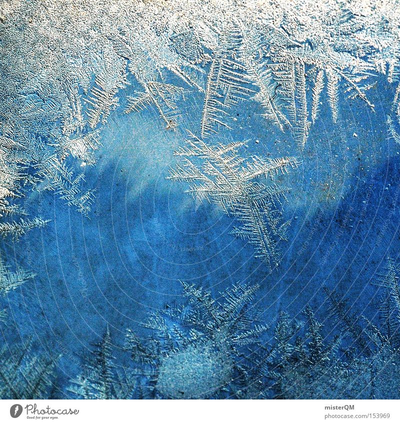 Winter Cold Snow Time Ice Frozen Minerals Macro (Extreme close-up) Crystal structure Detail Minus degrees Pack ice