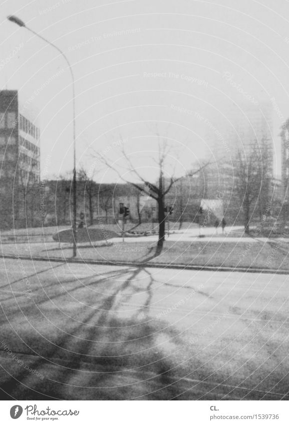 experiment expired film Human being Sunlight Autumn Winter Beautiful weather Tree Town House (Residential Structure) High-rise Transport Traffic infrastructure