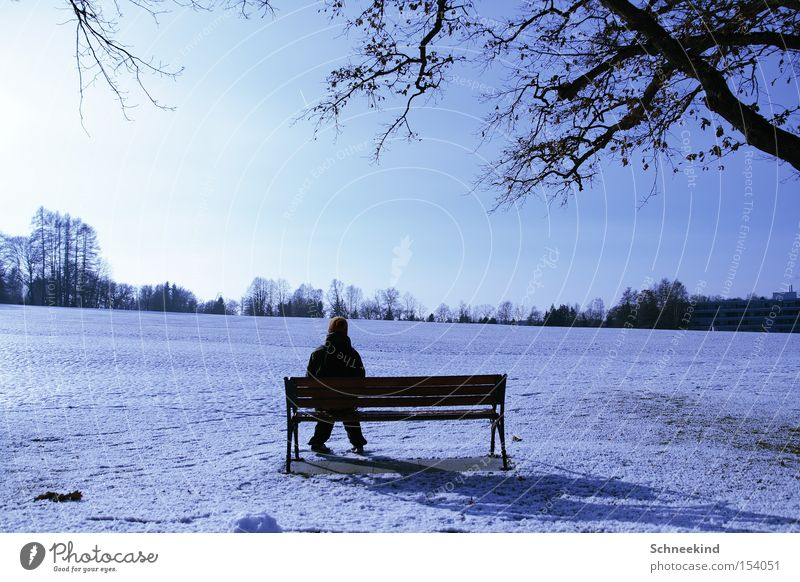 Just take a break Winter Break Sit Snowscape Landscape Sun Relaxation Bench Human being Vantage point Nature Sky Beautiful Perspective