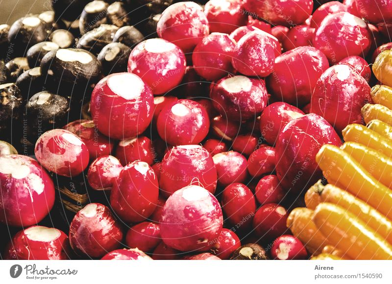 Nature Red Black Cold Natural Healthy Food Glittering Fresh Gold Nutrition Energy To enjoy Clean Round Delicious