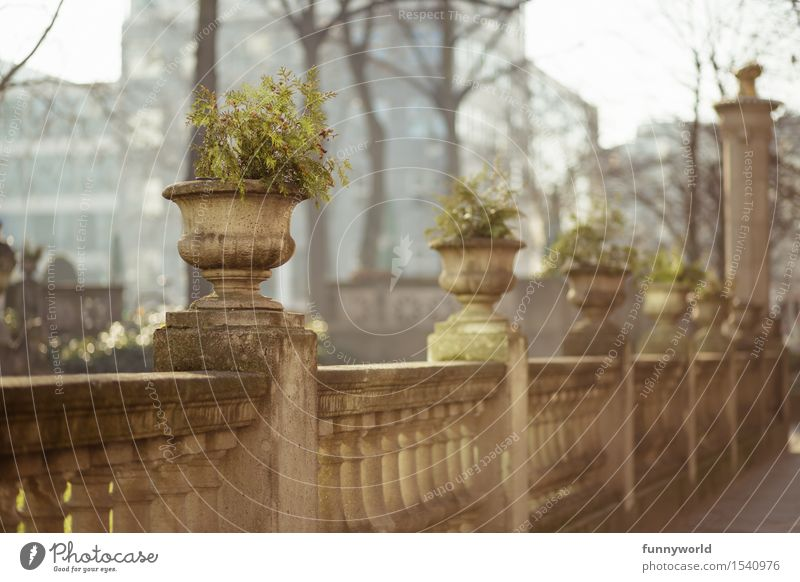 pots Deserted Architecture Historic Stone Fence Elegant Handrail Flowerpot Plant Pot plant Exterior shot Spring Border Fenced in Column Baroque Romance Day