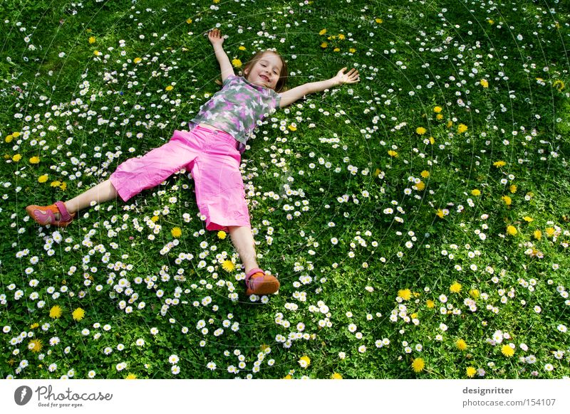 Child Girl Sun Flower Summer Joy Meadow Grass Spring Laughter Warmth Human being Lie Plant Nature Daisy