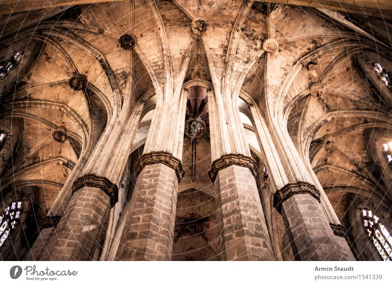 Cathedral - Columns Style Design Vacation & Travel Sightseeing Barcelona Church Dome chapters Tourist Attraction Old Esthetic Dark Large Historic Tall Cold