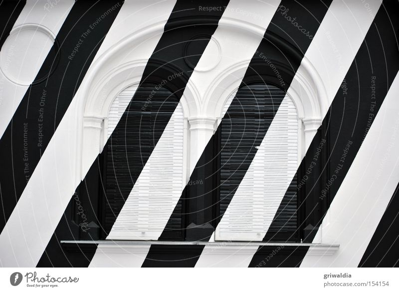 White Winter Black Cold Window Architecture Facade Closed Diagonal Austria Section of image Zebra Venetian blinds Graz Federal State of Styria