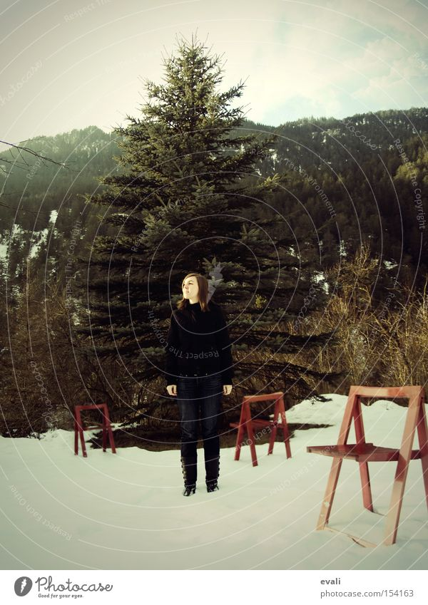 Woman Tree Red Winter Loneliness Snow Chair