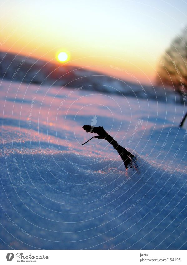 Sky Sun Winter Cold Snow Dusk Winter eveing