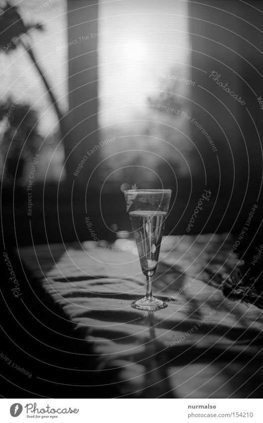 Sparkling water afterwards Sparkling wine Glass Beverage Refreshment Alcoholic drinks Champagne glass Back-light Black & white photo