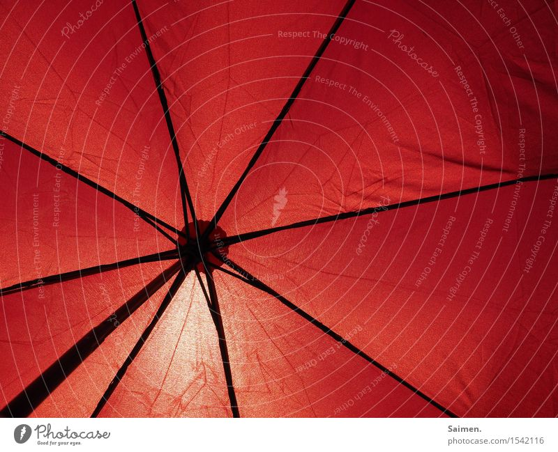 patronage Umbrella Moody Sunlight Sunshade Line Red Framework Summer Beautiful weather Warmth Protection Safety (feeling of) Weather protection Colour photo