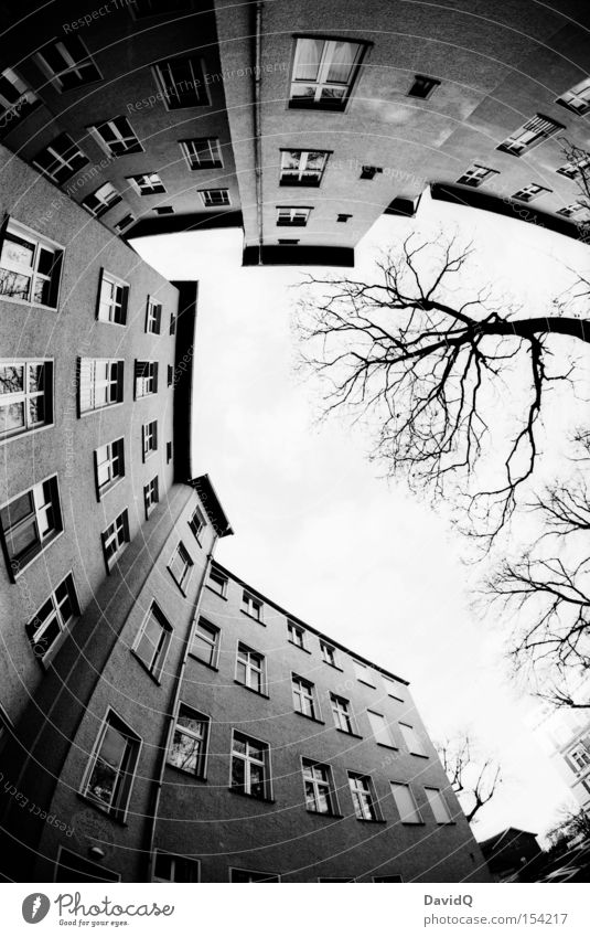 corner Corner Backyard Block Old building House (Residential Structure) Town house (City: Block of flats) Facade Window Tree Sky Fisheye Black & white photo