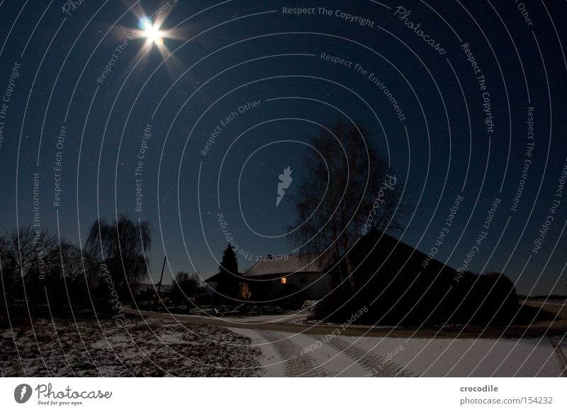 moonlight Moon Star (Symbol) Stars Farm Street Snow Winter Tree Dark Romance Light Lighting Cold Electricity Long exposure Beautiful Starry sky