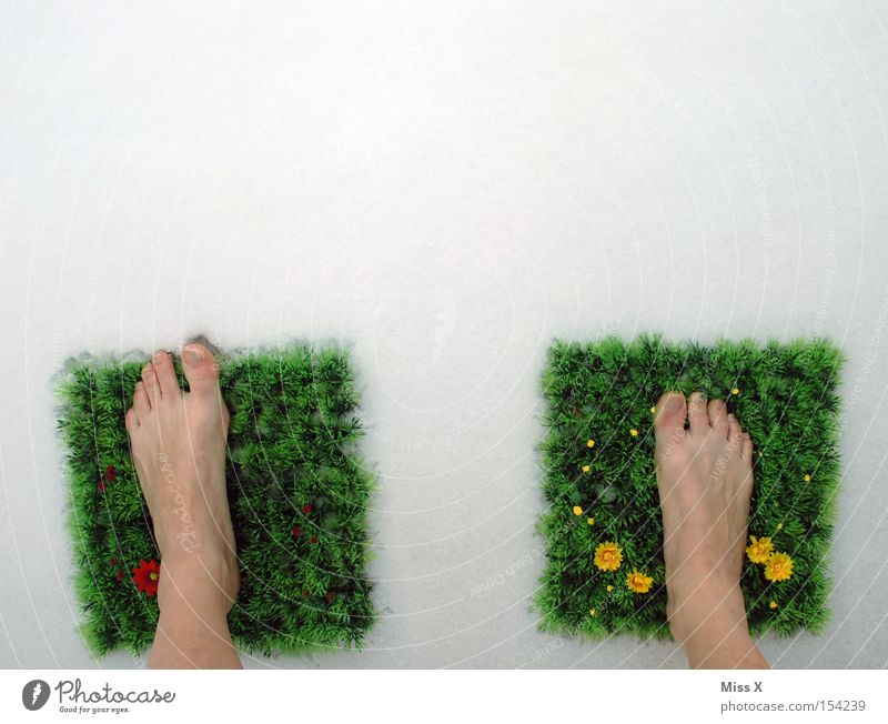 That's how it all started II* Colour photo Exterior shot Winter Snow Feet Spring Flower Grass Meadow Doormat Freeze Cold Green Toes Frost Barefoot Frozen Carpet
