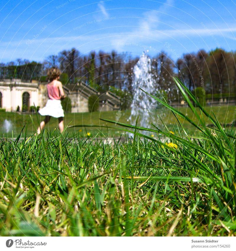 Sky Water Summer Animal Meadow Grass Earth Skirt Beetle Crawl Baroque Fountain