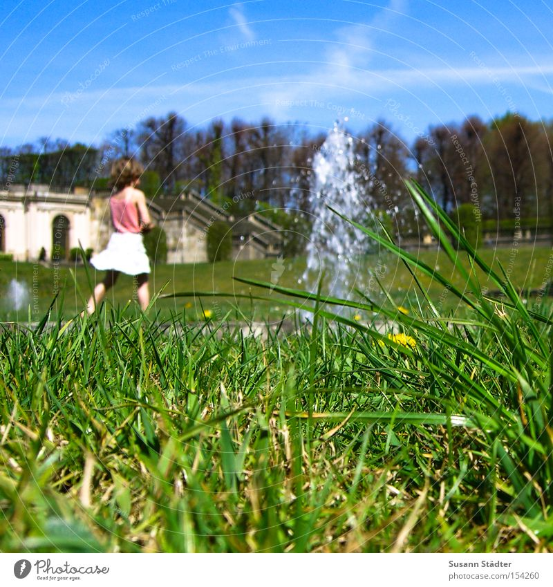 Sky Water Summer Animal Meadow Grass Earth Skirt Beetle Crawl Baroque Baroque Fountain