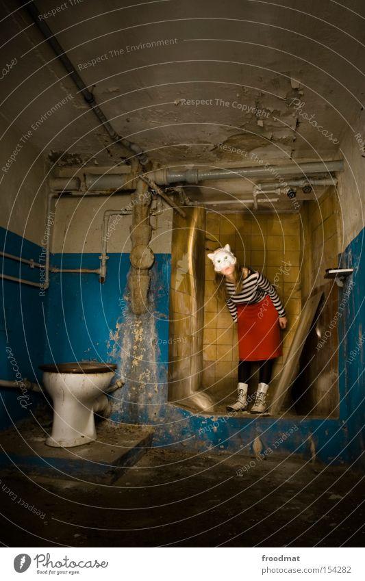 Cat Dirty Clean Bathroom Mask Derelict Feces Toilet Decline Shower (Installation) Surrealism Penitentiary Dress up Cellar Room