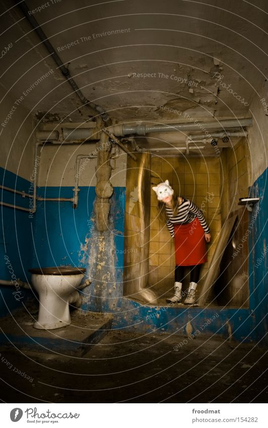 cat's litter box Cellar Decline Toilet Mask Dress up Surrealism Dirty Cat Clean Litter box Shower (Installation) Shower room Bathroom Penitentiary Derelict