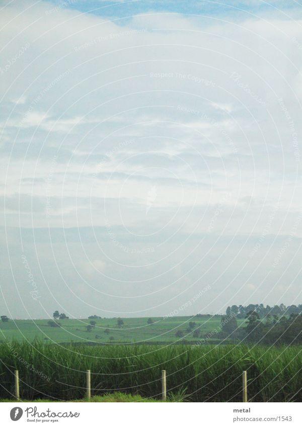 Clouds Street Meadow Landscape Background picture Transport Fence