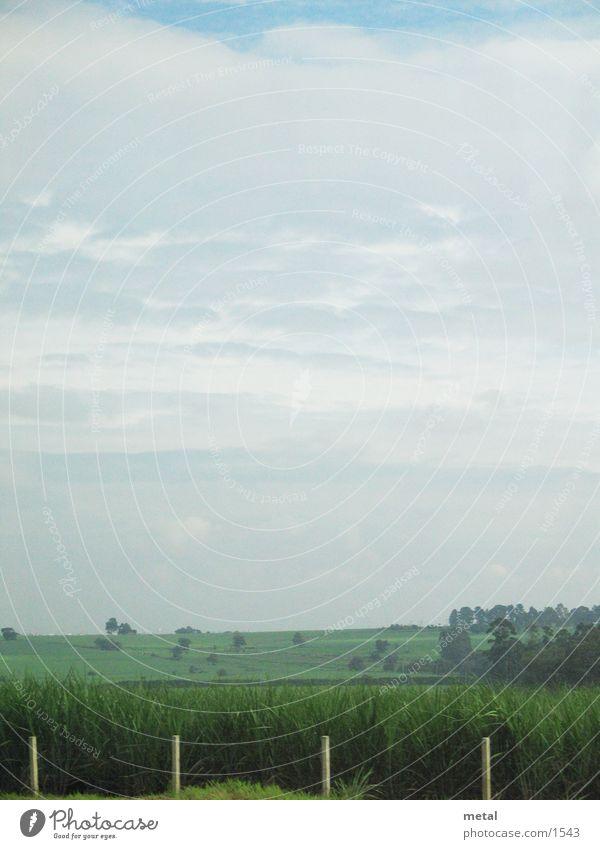 roadside Fence Meadow Clouds Background picture Transport Street Landscape