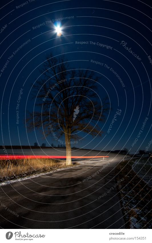 Tree Winter Loneliness Cold Field Stars Star (Symbol) Motor vehicle Romance Agriculture Frozen Moon Traffic infrastructure Bavaria Car headlights Starry sky