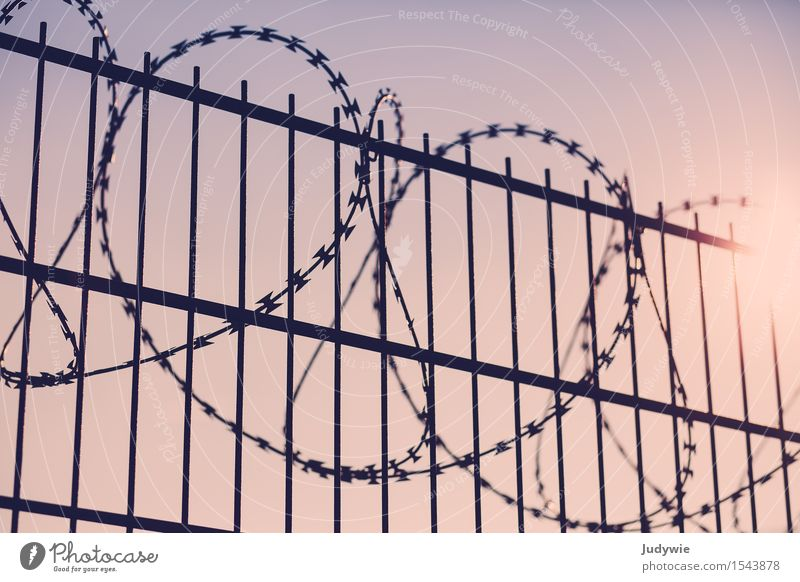 Nobody comes in Metal Threat Homesickness Wanderlust Inequity War Crisis Might Arrangement Politics and state Protection Safety Divide Surveillance Fence
