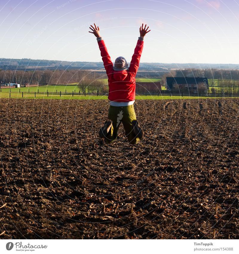 Jumping The Field Bog Joy Enthusiasm Stretching Arable land Rural Farm jump high Münsterland