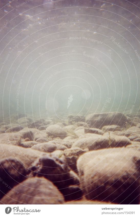 Water Beautiful Calm Relaxation Work and employment Stone Wet Underwater photo Romance Curiosity Damp Interest Patient Lake Constance Underwater camera