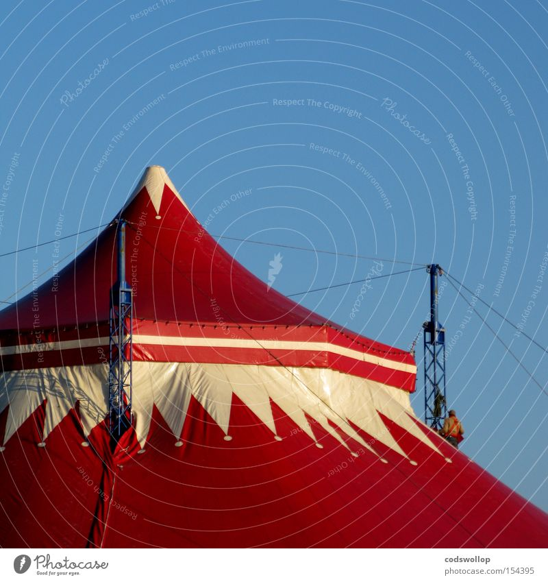 circus maximus Circus Event Entertainment Scaffolder Circus tent Enormous Heiligengeistfeld Rebuild Roofer Dismantling Tent Detail Exhibition