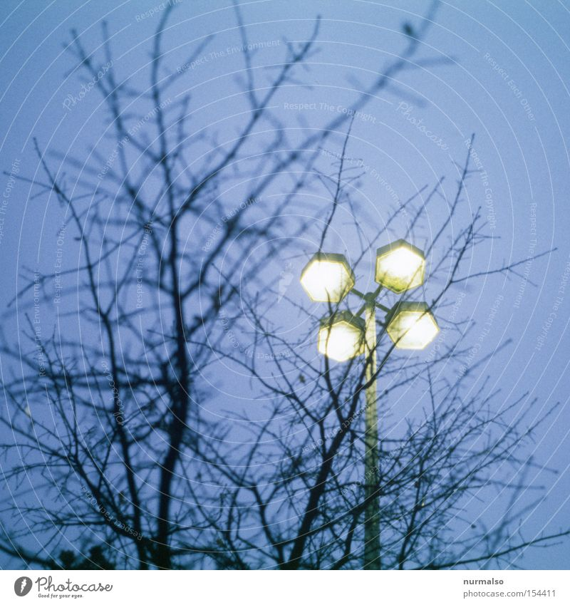 Sky Lamp Emotions Fear Aviation Future Film industry Bushes Branch Obscure UFO Eerie Trick Mars Spacecraft Star Wars
