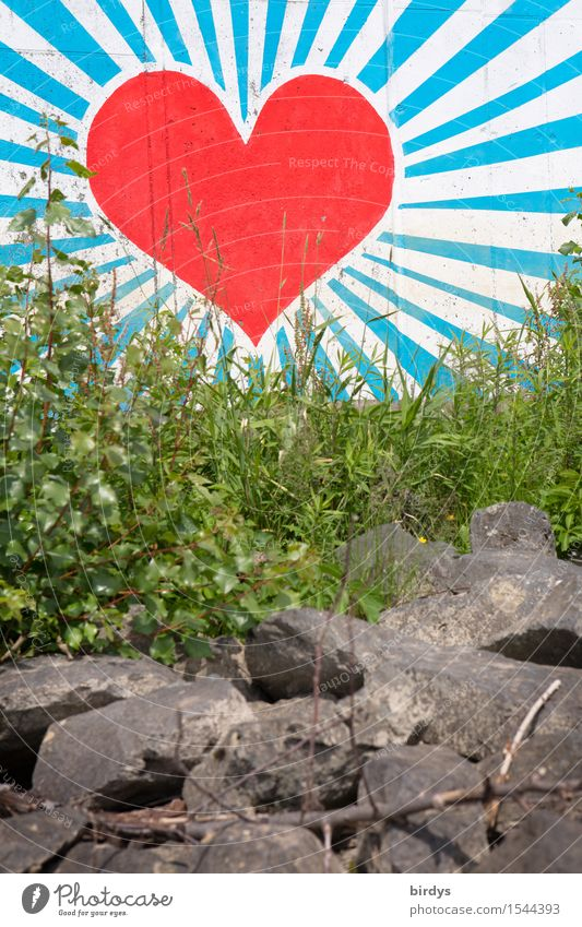 Heart behind grass Style Art Youth culture Graffiti Illuminate Esthetic Friendliness Large Positive Beautiful Blue Gray Green Red White Happy Spring fever Power