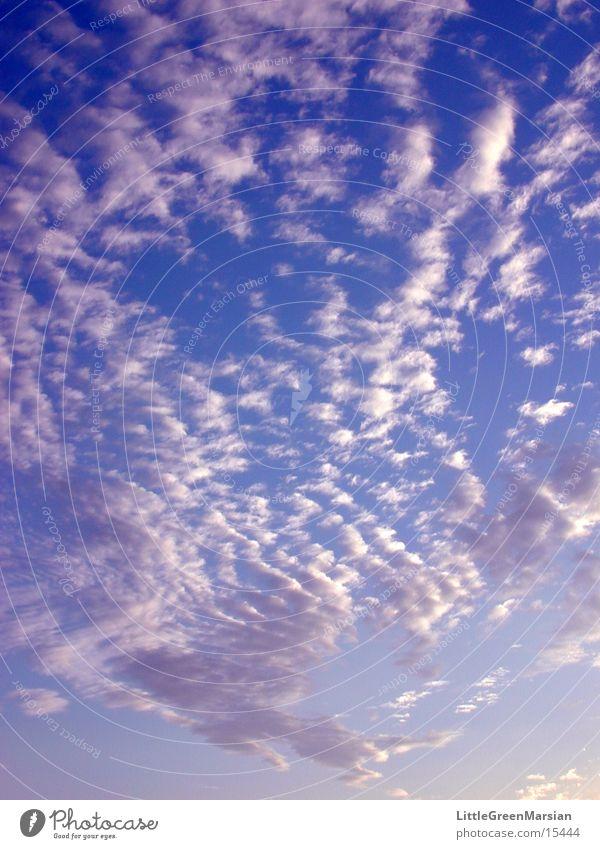 fleecy clouds Clouds Blue sky Sun