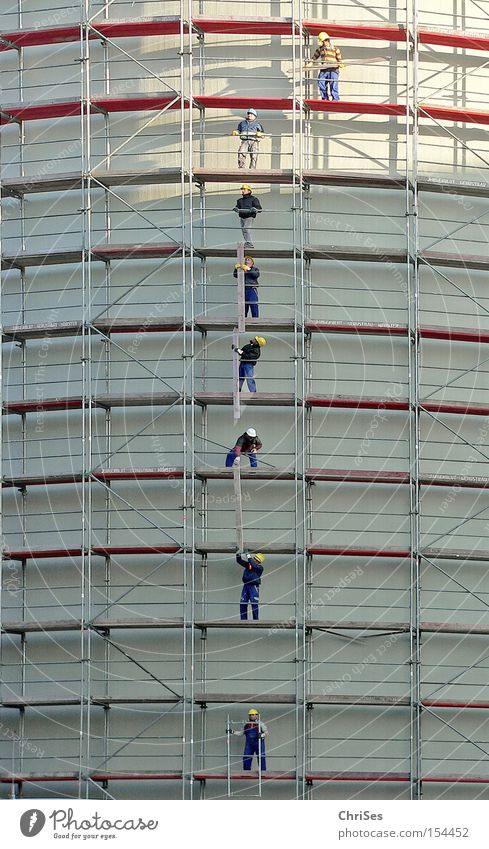 Work and employment Industry Cleaning Creativity Craft (trade) Build North Rhine-Westphalia Scaffolding Working man Arrange Rip Münster Plaster Handcrafts