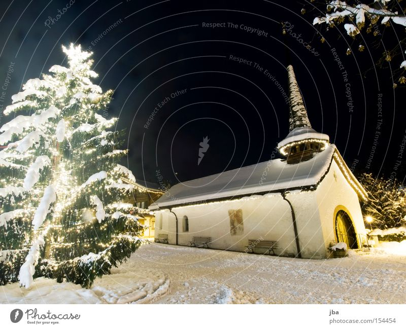 Christmas & Advent White Snow Places Church Christmas tree Tower Night sky Branch Tree Fir tree Promenade Fairy lights Nature Chapel