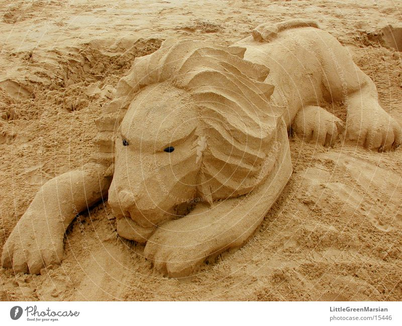 Beach Sand Leisure and hobbies Sculpture Lion Cat