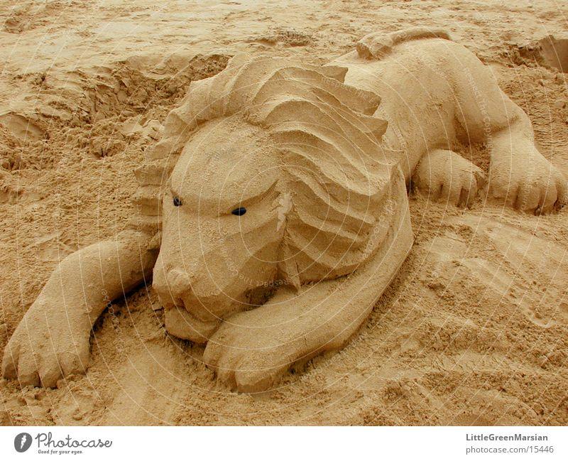 Beach Sand Leisure and hobbies Sculpture Lion Cat