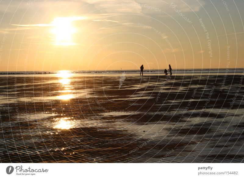 Human being Sun Ocean Beach Cold Family & Relations Ice Coast To go for a walk North Sea Sunset Mud flats Celestial bodies and the universe