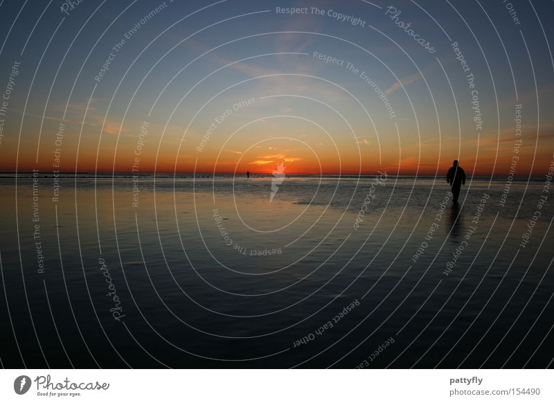 Human being Ocean Beach Colour Dark Cold Ice Coast Sunset Celestial bodies and the universe