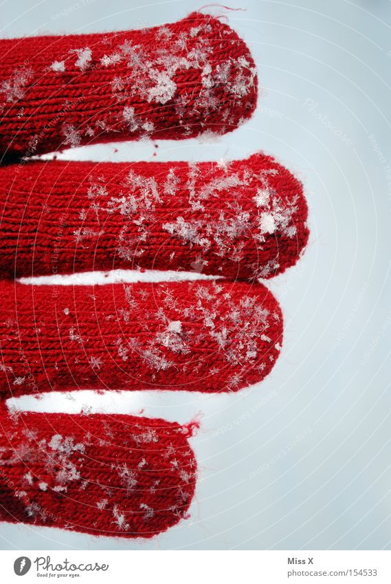 Hand White Red Winter Cold Snow Snowfall Warmth Fingers Frost Crystal structure Gloves Fragile Wool Snowflake Knit