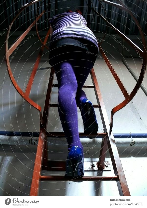Woman Legs Violet Climbing Science & Research Concentrate Stockings Tights Ladder High heels Mini skirt